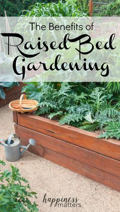 Raised bed gardening is a way of growing plants inside beds that are raised up above the normal level of the soil in the garden. They're typically housed inside a wooden frame, generally rectangular. The soil may be mixed in with tilled soil underneath, or it can simply be new soil placed on top of untilled ground. Learn more about the benefits of raised bed gardening and start your own! via @jen_dunham