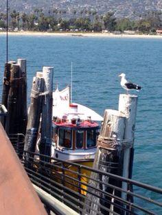 Santa Barbara-Lil Toot boat