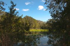 Jacksonville Arboretum & Gardens Trail  http://learnyourrights.com/