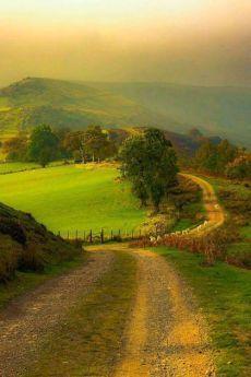 amadio83.tumblr.com Beautiful World, Beautiful Places, Beautiful Roads, Beautiful Beautiful, Beautiful Flowers, Country Life, Country Roads, Country Living, Landscape Photography
