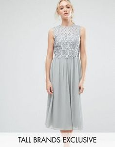 Little Mistress Tall Premium Lace Top Midi Skater Dress in grey at Asos
