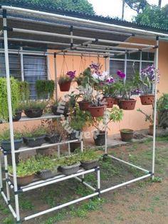 Rumah orkid - Garden Items for sale in Marang, Terengganu