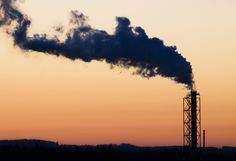 Climate Change by Industry: Who Is Most at Risk?