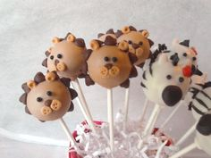 Zebras, lion, cake pops, animals, cake pops of victoria.