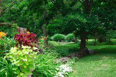spring/summer gardens