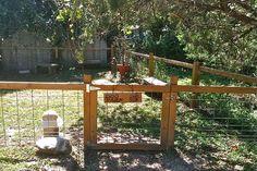 Pet park at Cypress Creek Cottages