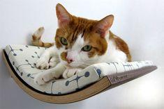壁掛けのネコ用ベッド「Curve Pet Bed」で寝転がるネコ写真集いろいろ - GIGAZINE    (via http://gigazine.net/news/20120410-curve-pet-bed/ )