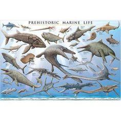 Prehistoric Marine Life Educational Chart
