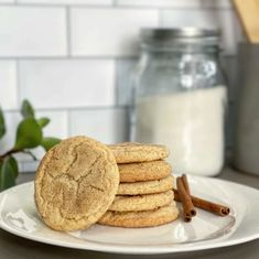 Classic Snickerdoodle cookies, complete with the traditional sugar and cinnamon topping, are now Grain-Free and Gluten-Free thanks to Otto's Cassava Flour! We bet you can't eat just one. Cassava Flour Recipes, Paleo Flour, Gluten Free Snickerdoodles, Coconut Biscuits, Snickerdoodle Recipe, Snicker Doodle Cookies, Vanilla Cookies, Thing 1, Oatmeal Recipes