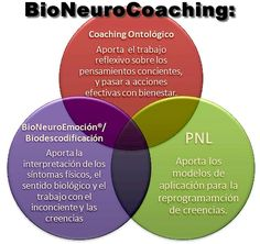 Articulos sobre BioNeuroCoaching