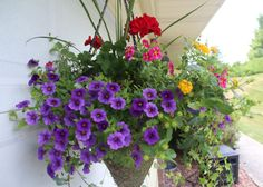 May is finally here and it is time to gather all your pots and hanging baskets to create beautiful arrangements. So today, I want to share with you a tutorial on my secret to a creating a great hanging basket. I have used this method for all my hanging baskets and other container pots and my flowers always turn out great. Flowers can add so much beauty to your deck, patio or garden area. And if you don't really have a lot of space for container pots, then hanging baskets are the way to go. I am