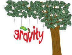 GRAVITY | Aquanets.org