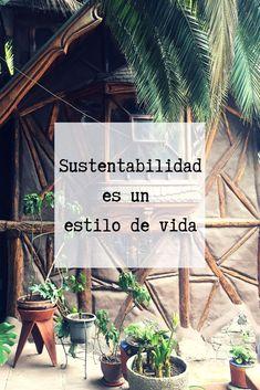 Chile, Medium, Plants, Zero Waste, Circular Economy, Environment, Flowers, Spirituality, Products
