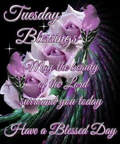 Tuesday Blessings, Have A Blessed Day tuesday tuesday quotes tuesday pictures tuesday images Tuesday Quotes Good Morning, Happy Tuesday Quotes, Weekend Quotes, Good Morning Picture, Good Morning Greetings, Good Morning Good Night, Morning Pictures, Night Quotes, Morning Images