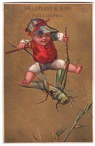 Sharpless Dry Goods Victorian Trade Card Boy on Grasshopper
