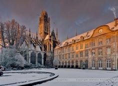 ✅ Jardin de l'Hôtel de ville de Rouen (76)