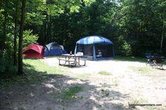 Brent campground campsite 7, Algonquin