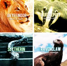 Am i the only one who thought the ravenclaw eagle was a lizard?
