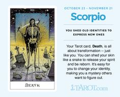 Scorpio Tarot: DEATH You shed old identities to express new ones. Your tarot card, Death, is all about transformation --just like you. You can shed your skin like a snake to release your spirit and be reborn. It's easy for you to change your identity, mak Scorpio Traits, Scorpio Girl, Zodiac Signs Scorpio, Scorpio Quotes, Scorpio Moon, My Zodiac Sign, Sagittarius, Scorpio Star, 12 Zodiac