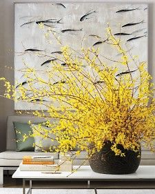 A bright spot in early spring. Like how the forsythia contrasts with the black pot.