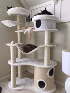 an ultra modern cat tree with several platforms and beds, with scratcher posts and some hammocks Animal Room, Diy Pour Chien, Diy Cat Tree, Cat Playground, Cat Enclosure, Cat Scratcher, Cat Condo, Cat Tree Condo, Cat Room