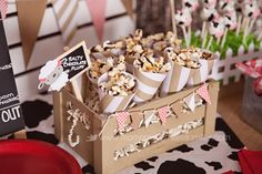 Farm Theme Birthday Party Girl Toddler 2 40, food table, popcorn, paper cones