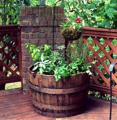 Whiskey Barrel Herb Garden – Elevation Gardens