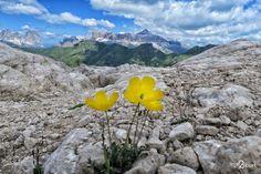 Marmolada, Punta Penia 3343 m, Dolomiti | Time2Sport Mountains, Nature, Travel, Naturaleza, Viajes, Destinations, Traveling, Trips, Nature Illustration