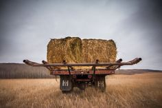 Back view of an old International truck with round bales on the back in a stubble field. Fine Art Prints, Canvas Prints, Truck, Lens, Photo Canvas Prints, Trucks, Track, Lentils