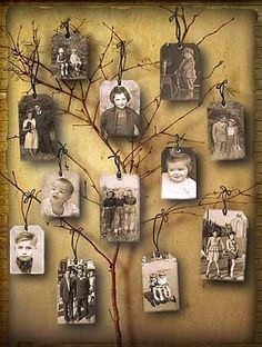 14 ideas of where to hang your family photos family tree of the photos in the interior