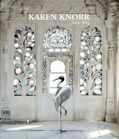 Karen Knorr captures the enchanting palaces of Rajasthan in a stunning new book