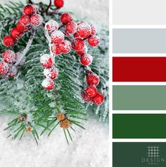 Color Palettes from Design Pool - Color and Design Specialists - Green, Red, Gray, Greenery, Winter. Color Schemes Colour Palettes, Red Colour Palette, Green Palette, Winter Color Palettes, Christmas Palette, Christmas Colour Schemes, Red Color Pallets, Winter Colors, Color Inspiration