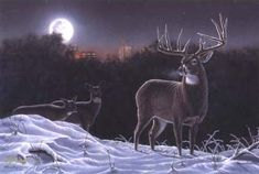 Wildlife Prints | Whitetail Deer Buck Winter Countryside Moonlight Encounter Painting