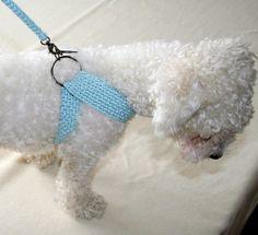 Friendly DOG harness, Matching leash, Pets Harness - Small dog harness