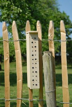 een praktische handleiding voor het maken van een nestkast voor solitaire bijen. Onderstaand getimmer te ingewikkeld? het kan ook simpeler (maar minder leuk) met een nestblok voor bijen. noot: het …