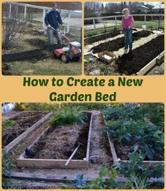 I'm always thrilled to hear about new (and not so new) gardeners creating a new garden bed. We need more gardens and more growers. Not even 100 years ago every family had a garden. Gardens are rewarding and fun. But how to create a new garden bed if you have none? A few things to consider ...