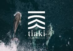 Tiaki - Care for New Zealand Maori Designs, Cool Designs, Branding Design, Logo Design, Graphic Design, Logan, Islands In The Pacific, Air New Zealand, Personal Identity