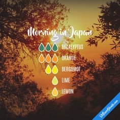 Morning in Japan - Essential Oil Diffuser Blend