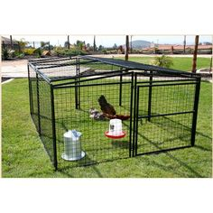 Find Rugged Ranch Universal Welded Wire Pen in the Chicken Coops & Pens category at Tractor Supply Co.The Rugged Ranch Universal Welded Wire Pen My Pet Chicken, Metal Chicken, Chicken Runs, Chicken Coops, Chicken Houses, Chicken Feeders, Chicken Tractors, Portable Dog Kennels, Dog Playpen