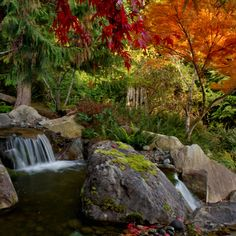 Fall, Western WA