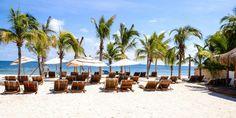 Palms, sand, ocean!