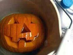 Pumpkin keeper..