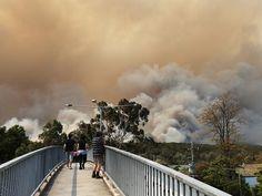 NSW Bush Fires BLUE MOUNTAINS