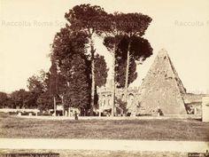 La Piramide Cestia vista dal cimitero acattolico, e a sinistra, sullo sfondo, si vede Porta San Paolo