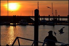Afurada [2012 - Gaia - Portugal] #fotografia #fotografias #photography #foto #fotos #photo #photos #local #locais #locals #cidade #cidades #ciudad #ciudades #city #cities #europa #europe #pessoa #pessoas #persona #personas #people #pordosol #puestadelsol #sunset @Visit Portugal @ePortugal