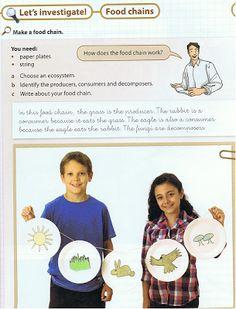Experimentos en Educación Primaria e Infantil: Díptico modificable recogida experimentos