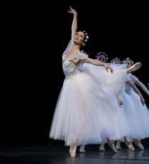 Dromen: Het Nationale Ballet