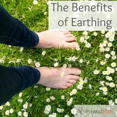 Learn the benefits of earthing and how simple it is to reconnect to the earth. #earthing #health #naturalliving