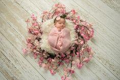 Newborn & Family Photographer Victoria BC | Mary Jane Howland