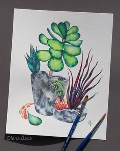 Succulents. Watercolor painting by Olena Baca.